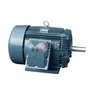 มอเตอร์ Explosion Proof Motors TECO