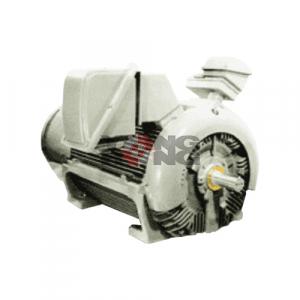 มอเตอร์ High Voltage 3 Phase Motors TECO