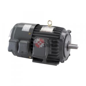 มอเตอร์ Inverter Duty Motor TECO