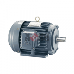 มอเตอร์ Low Voltage 3 Phase Motors TECO