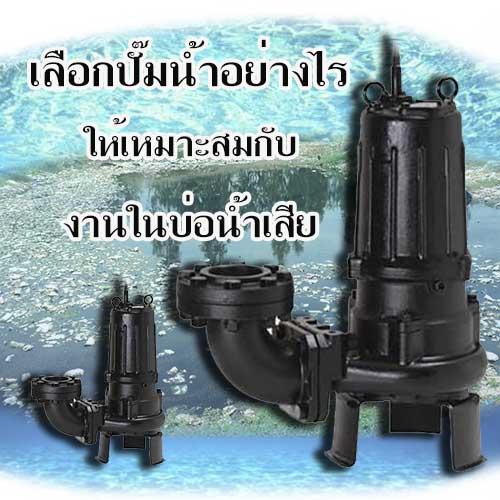 ปั๊มน้ำงานน้ำเสีย TSURUMI C Series